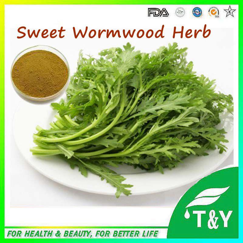 Sweet Wormwood Herb Extract/Artemisinin/HPLC extract
