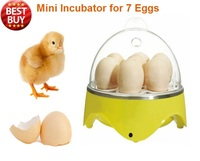 Cheap Mini automatic 7 Eggs incubators Hatcher for Hatching eggs Tool For Chicken Duck ostrich 110V-240V  hatchery machine