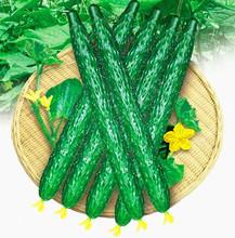 Cucumber Seeds Cucumis Sativus Cuke Seeds, Green vegetable Seeds garden supplies 100pcs(China (Mainland))