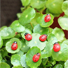 Hot Sale 20Pcs/pack Wooden Ladybird Ladybug Sticker Children Kids Painted adhesive Back DIY Craft Home Party Holiday Decoration(China (Mainland))
