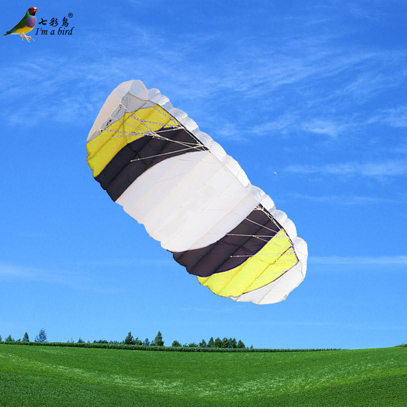 Free Shipping Outdoor Fun Sports Power Dual Line Stunt Parafoil Parachute Rainbow Sports Beach Kite For Beginner(China (Mainland))