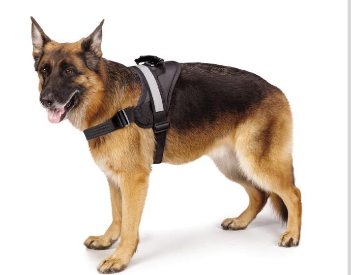 Dog Vest With Handle Large Dog Vest Harness For