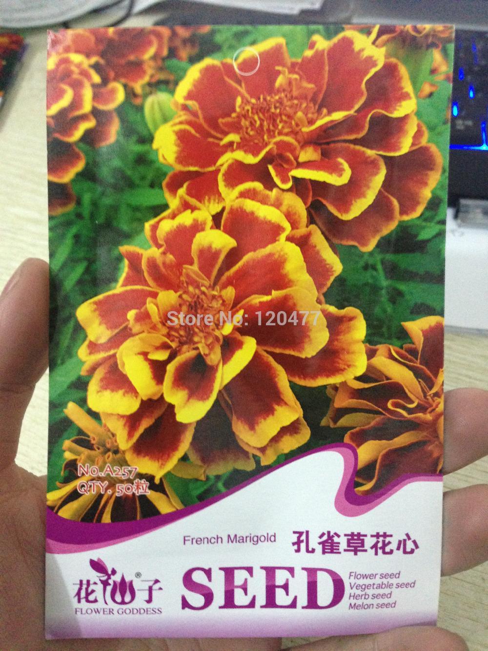 Maidenhair Mahogany seeds, french marigold seeds about 50 seeds/bag(China (Mainland))