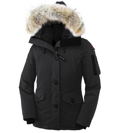 Winter Jacket Companies - JacketIn