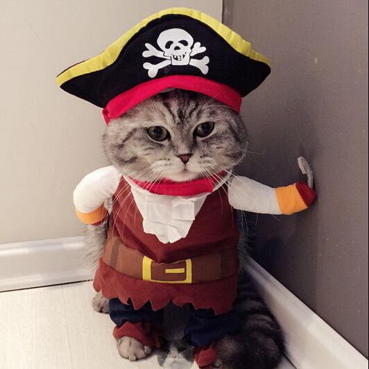 Funny Halloween pet cat dog Pirate costume cosplay clothes with a Skull dog hat for dog cat Pet party clothes Corsair palm(China (Mainland))