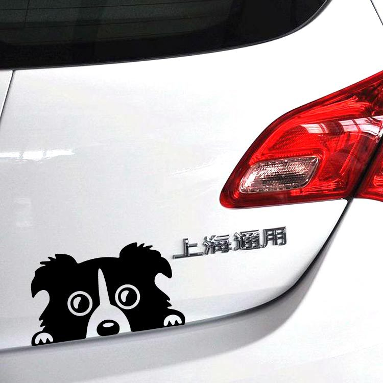 1PC 14*8cm 2016 New Design funny car stickers Peeking Border Collie Dog Vinyl Decals Truck Decor Car Door Body And Motorcyle(China (Mainland))