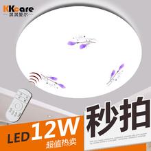 Bedroom led Ceiling light Lamp Brief Living room lights Adjustable 49cm 36W Lamparas de techo(China (Mainland))