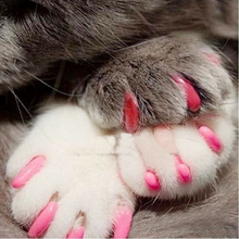 Buy 20pcs/lot Soft Cat Pet Nail Caps Claw Control Paws + Adhesive Glue Dog Nail Caps Size S M L XL 9 Colors for $1.50 in AliExpress store
