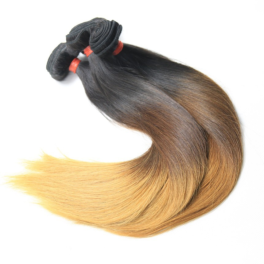 Ombre Brazilian Virgin Hair Extension Hair Weave in Straight Hair 3 Bundles Per Lot Free Shipping(China (Mainland))