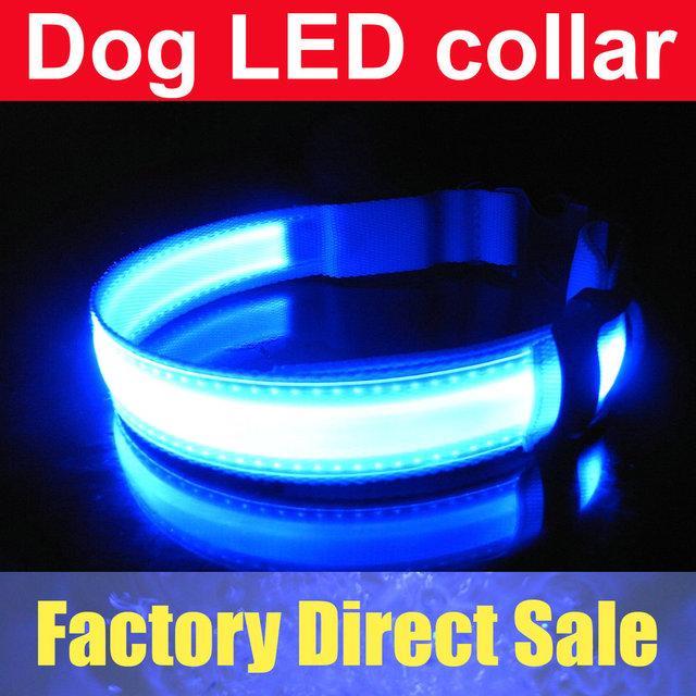 Pet Dog Safety LED Collar LED Light up Flashing Glow Blue Red