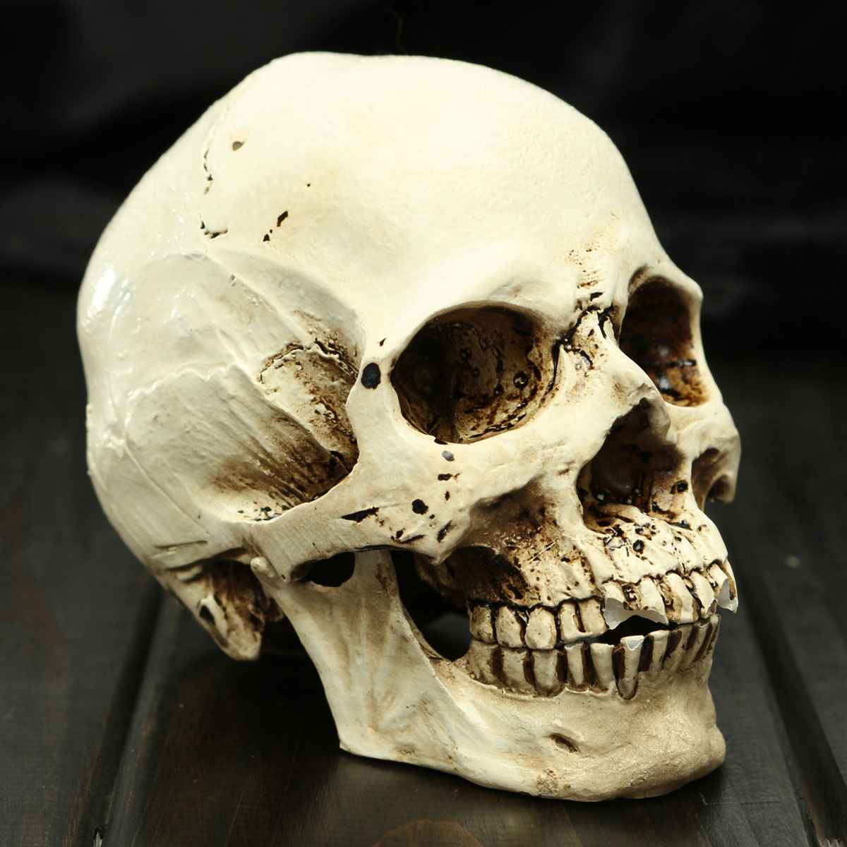 New Halloween Props Small Human Skull Replica Resin White Head Skull Model Gifts Haunted House Room Escape Horrible Supplies(China (Mainland))