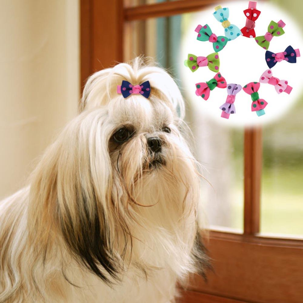 10Pcs Polka Dot Pet Dog Hair Clips Headband Pet Grooming Accessories(China (Mainland))