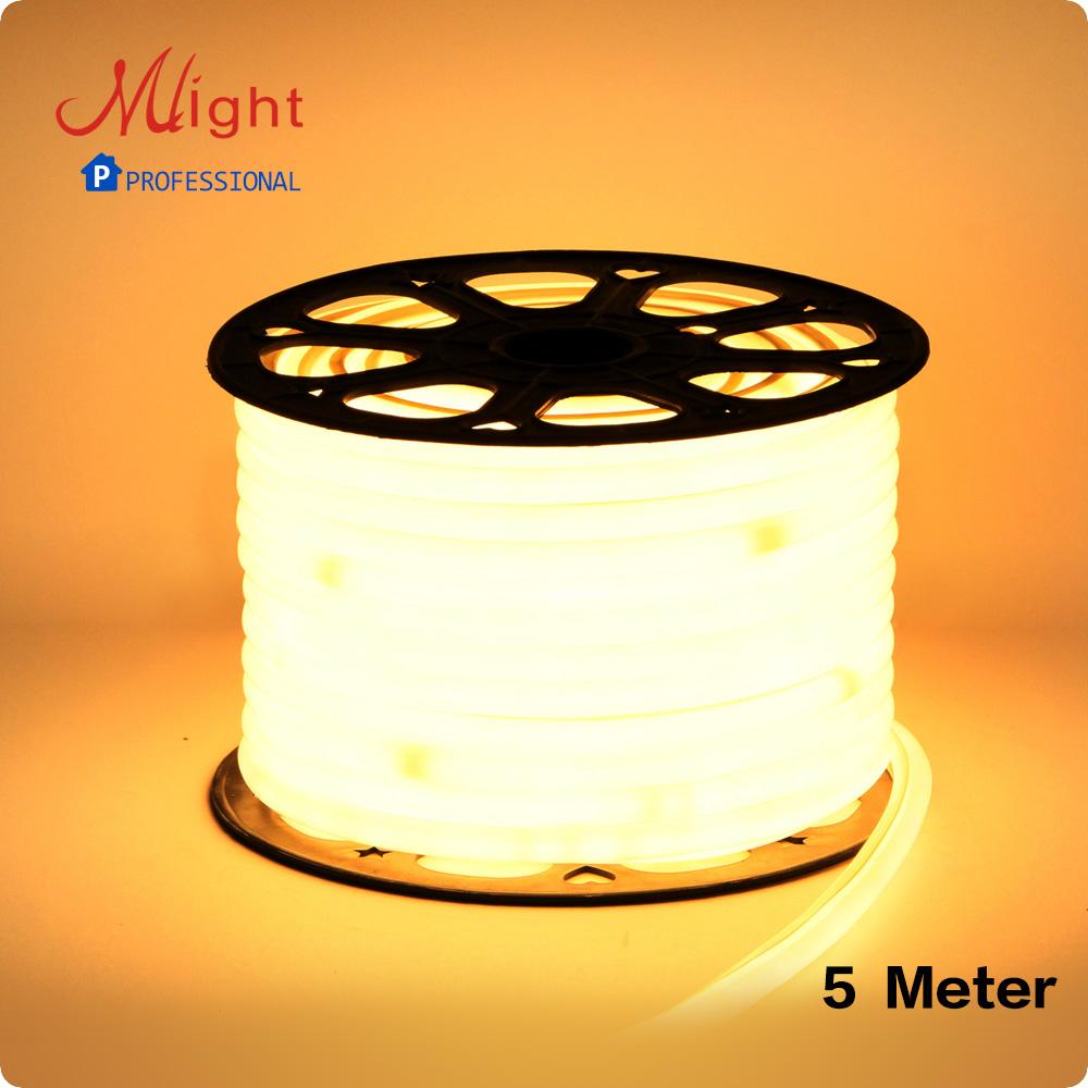 5 Meters 220V SMD5050 740pcs/lot Flexible LED Strip Lights ribbon waterproof IP65 Kitchen, Dining room Decorative Light Neon(China (Mainland))