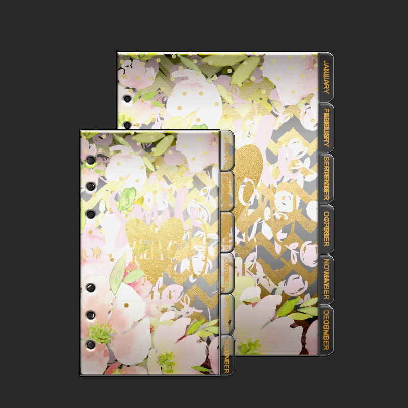 Dokibook Transparent Notebook Planner Accessories Inner page 12pcs/set A5A6 Dividers Plate Filler Papers Day Planner Matching(China (Mainland))