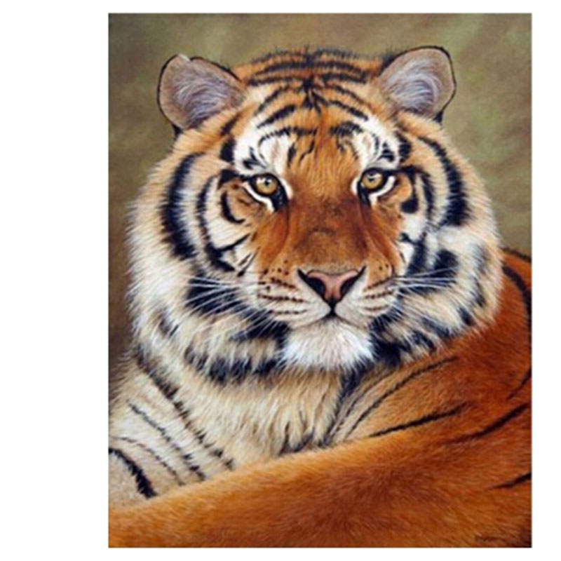 Beauty Life New 3D DIY Diamond painting cross-stitch King Tiger Animals Diamond embroidery cross picture of crystals Craft hobby(China (Mainland))