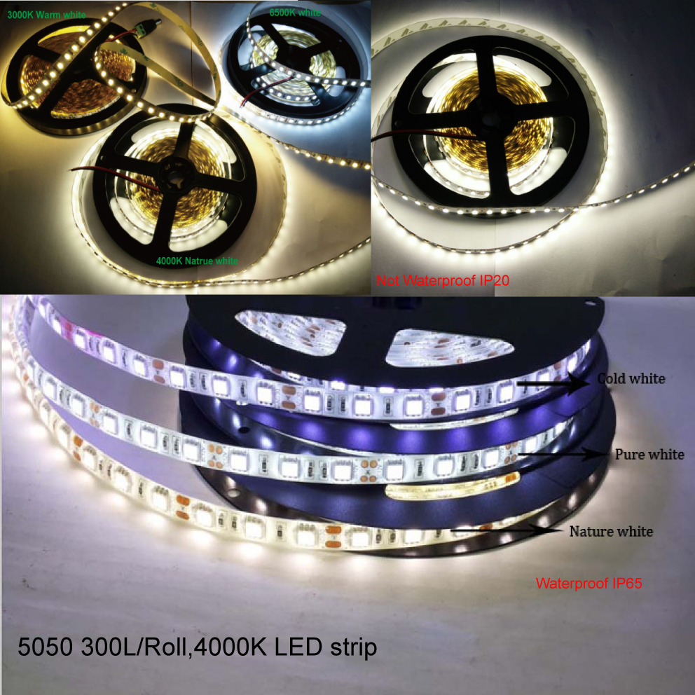 led rope indoor outdoor decoration light in led strips from lights