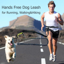Buy Elastic Waist Dog Leash Running Jogging Dog Lead Collar Sport Adjustable Nylon Leash Reflective Strip Pet Accessories 05 for $9.59 in AliExpress store