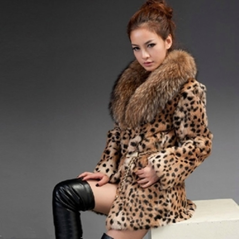 Find womens leopard print jackets at ShopStyle. Shop the latest collection of womens leopard print jackets from the most popular stores - all in one.