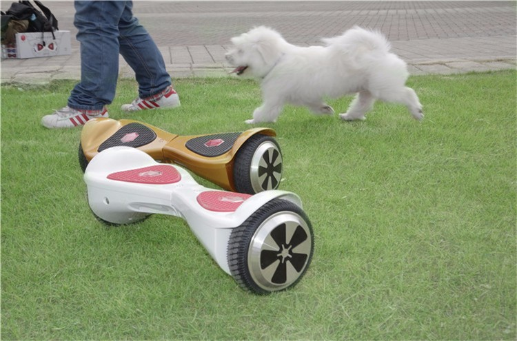 hoverboard (10)