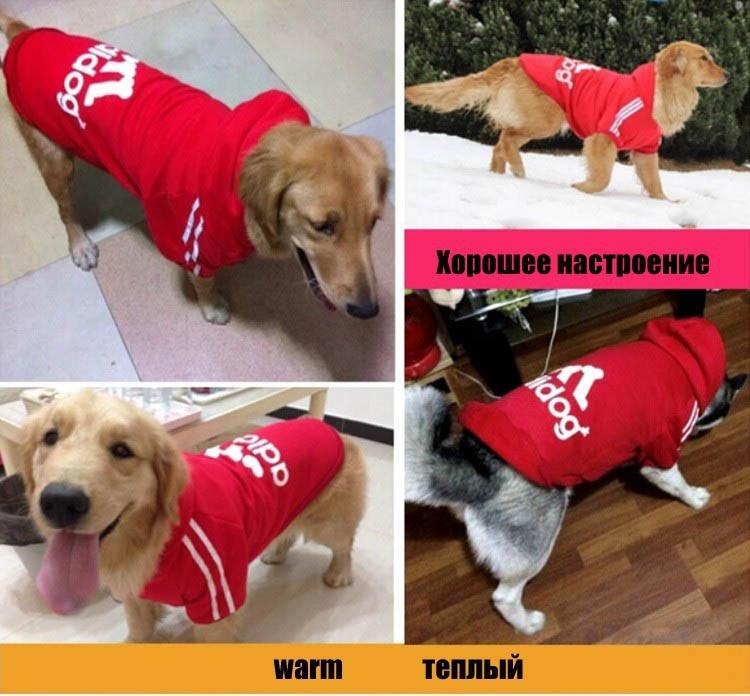 Big Dog Clothes Adidog Sport Pet Clothing For Large Dogs Hoodie Golden Retriever Coat Costume Size XS S M L XL XXL XXXL 4XL 11313