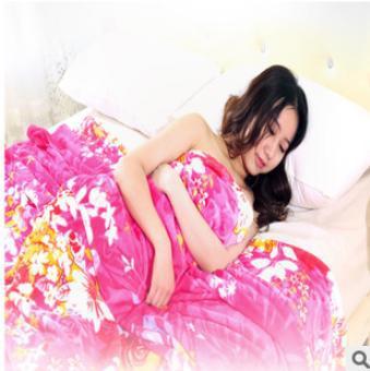 Fleece blanket 200x230cm 750g 3D flannel fleece blanket bed sheets Super Soft Micro-Plush Polyester Blanket  Wholesale 015(China (Mainland))