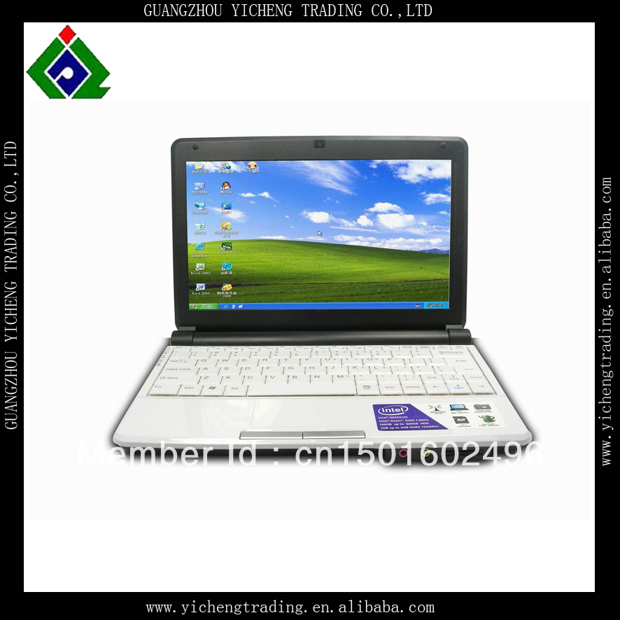 Free DHL Delivery cheap 10 inch china mini laptop with webcam white color 1GB RAM 500GB HDD Intel atom Due core D2500 cpu(China (Mainland))