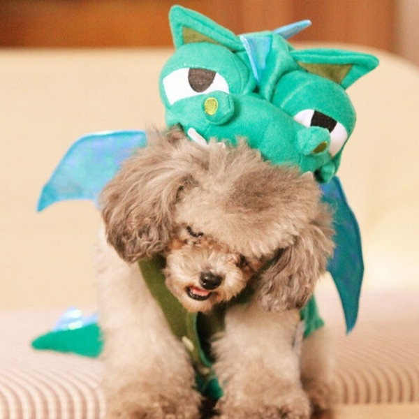Halloween Funny Dog Coat Comfortable Soft Cotton Velvet Dinosaur Turned Costume Pet Products New 2015 Puppy Clothes 1PCS/LOT(China (Mainland))