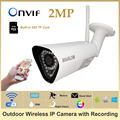 HOSAFE SV2MB2W SD 1080P Wireless Outdoor IP Camera Built in 32GB Micro SD Card Real Time
