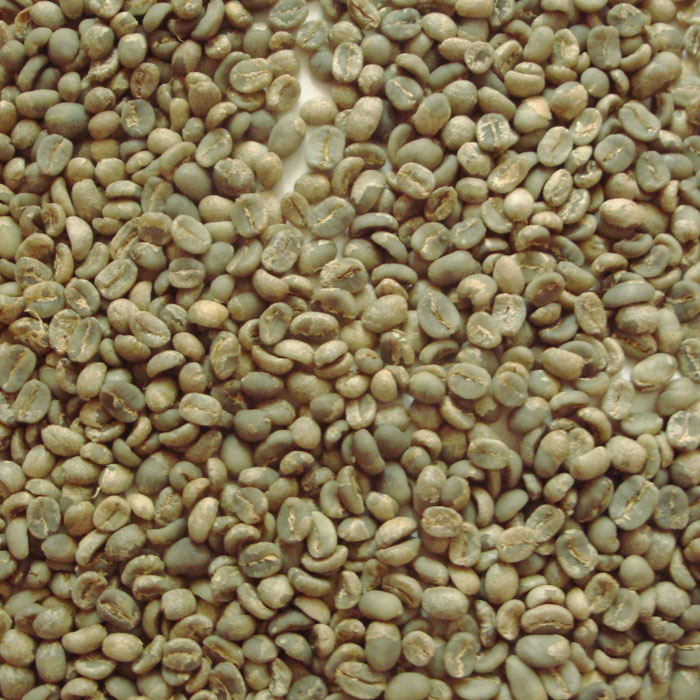 Free shipping Cat coffee beans Cat coffee Unbaked Coffee Beans Kopi Luwak 100g