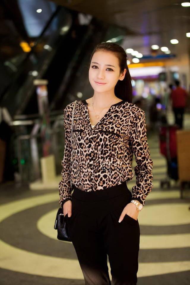 2015 New Fashion Women Wild Leopard Print Chiffon Blouse Lady Sexy Long Sleeve Top Casual Shirt Loose V-neck Blusas - Beautiful life, happy life store