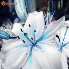 Promotions Bleu Coeur Lily Graines de Plantes En Pot Bonsaï Plante Fleur De Lys Graines pour La Maison Jardin 50 Particules/lot(China (Mainland))