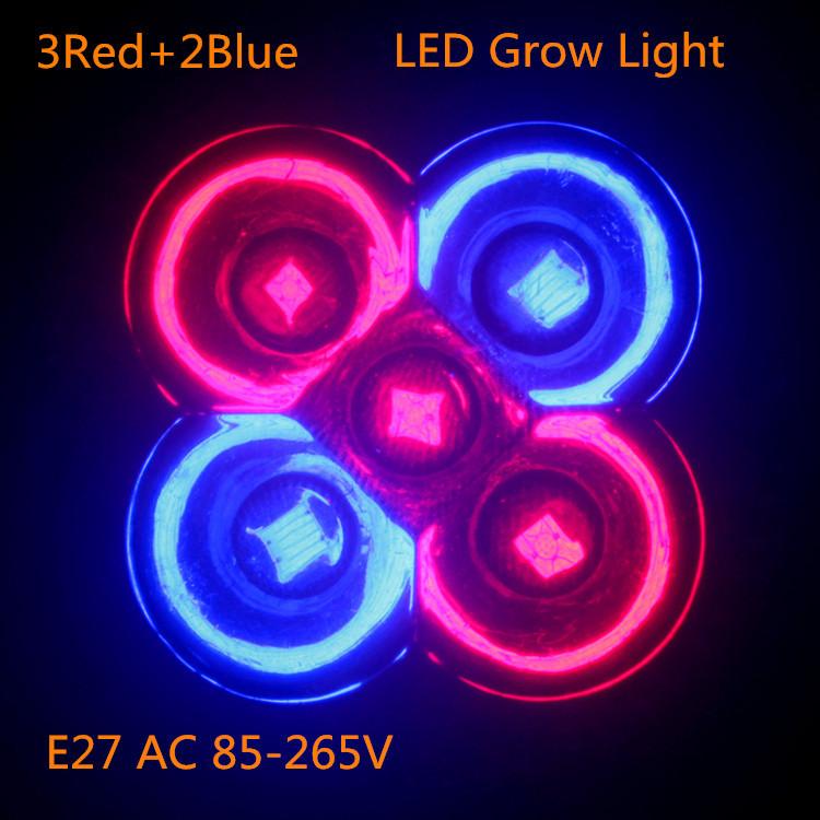 1pcs Full spectrum LED Grow lights 10W E27 3Red 2Blue LED Grow lamp bulb for Flower