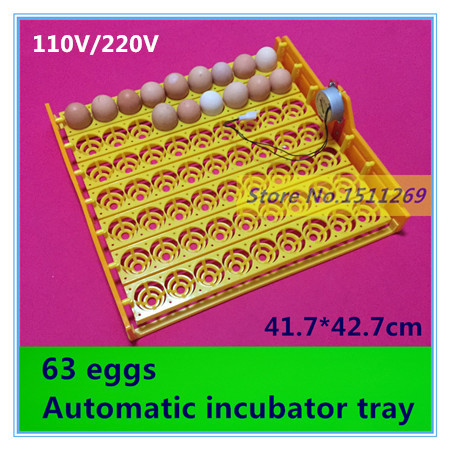 63 eggs Automatic Incubator Egg tray 48 egg incubator 110V 220V motors New incubation equipment Chicken