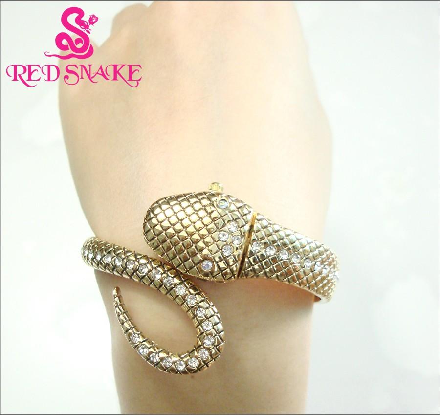 snake-watch4