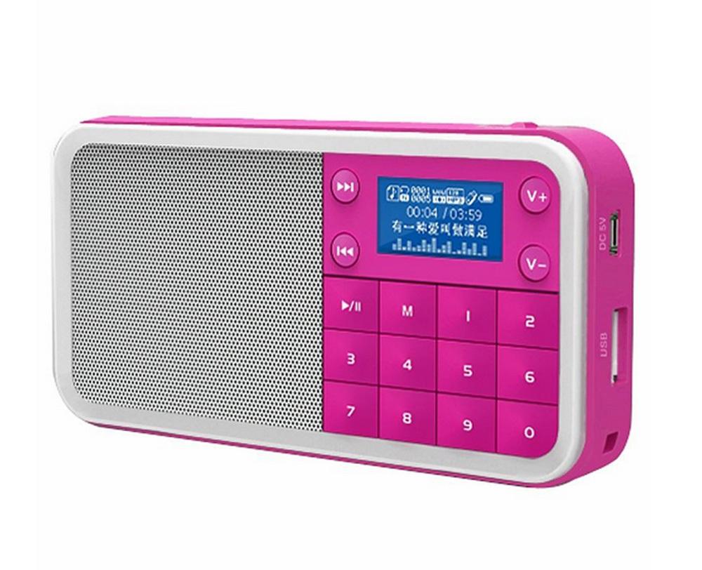 PANDA/DS - 186 digital jukebox card small portable mini digital speakers sound on the radio(China (Mainland))