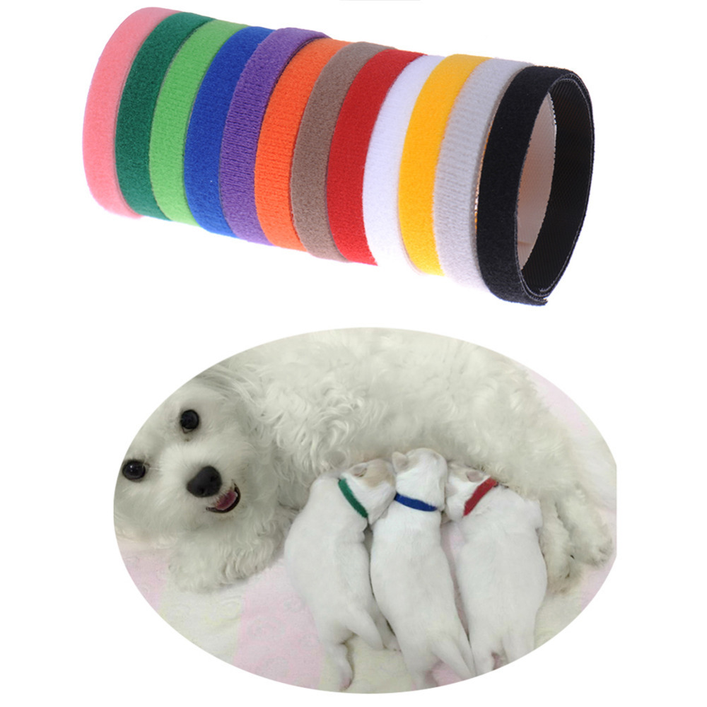 Whelping Puppy Kitten ID Collars Bands Soft Breathable Adjustable Pet Product Accessories Animal Collars for Dog Pet Cat(China (Mainland))