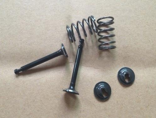 gx35 valve & spring