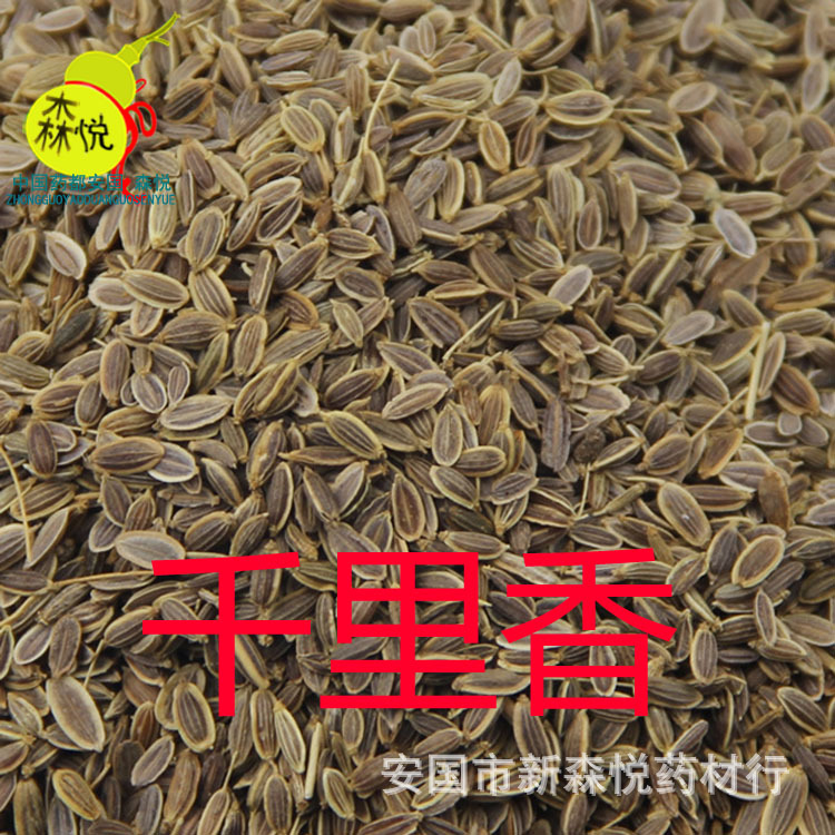soil fennel plant qianlixiang in raw materials wholesale unsalable processing all kinds of medicinal powder fineness<br><br>Aliexpress