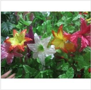 Super artificial lily flower rattan decoration arch silk flower artificial flower rattan(China (Mainland))