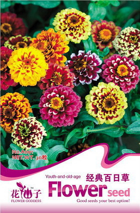 1 Pack 50 Seed Mix Color Classic Zinnia Elegans Flower Seeds - Commodity little's store