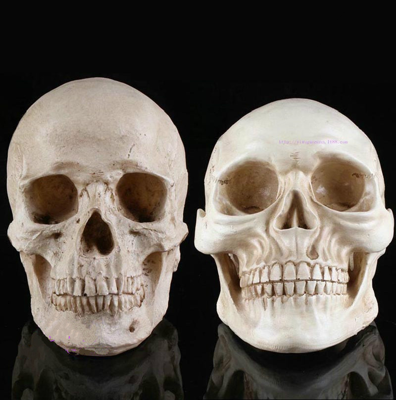 Halloween resin Skulls The Skeleton Head Funny Persecute Others Props Bar Party Decor An atmosphere of terror(China (Mainland))