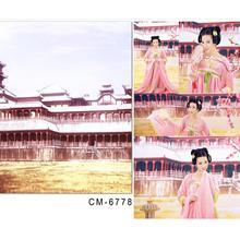 Photography Baby Backdrops Chinese Wind Retro Architecture Photo Studio