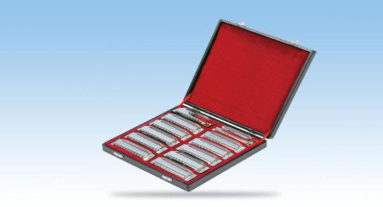 "Free shipping high-quality swan 10 hole 12 adjustable dress blues harmonica ""ABCDEFG Ab Bb Db Eb Gb""(China (Mainland))"