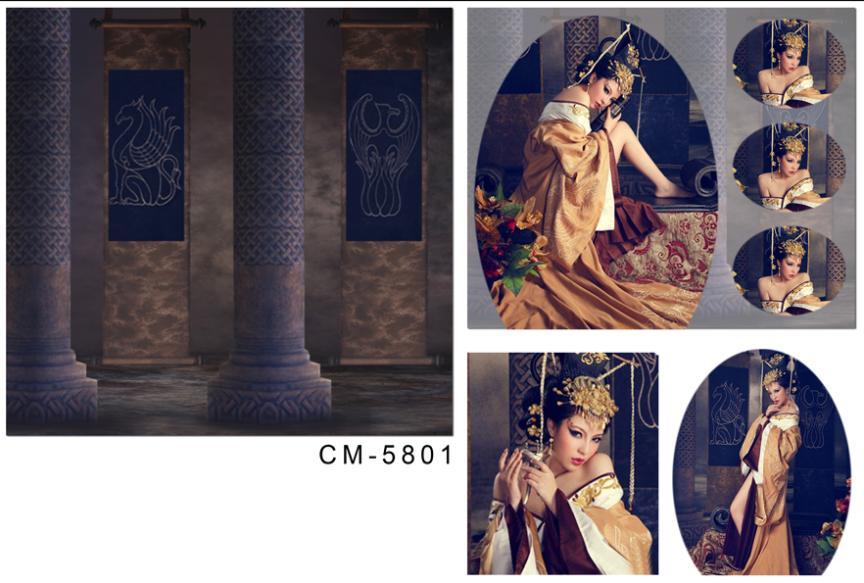 Здесь можно купить  wedding background photography 600cmX300cm christmas backdrops Pillars painted palace  CM-5801  Бытовая электроника