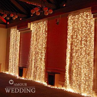 xmas 3 m * 3 m 300 led Wedding decoration tassel decoration light waterfall light holiday string light with tail plug 2pcs/lot(China (Mainland))
