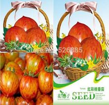 free shipping red color peach tomato, Tomato seeds, Peach tomato red color vegetable seeds - 20 Seed particles(China (Mainland))