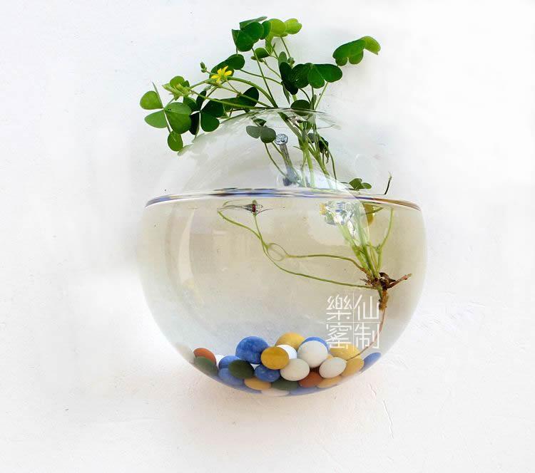 Glass Wall Planter Vase Wall Bubble Planter Terrarium