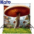 10ftx6 5ft Alice in Wonderland Photography Backdrop Mushroom Forest Lawn background for photography studio without stand