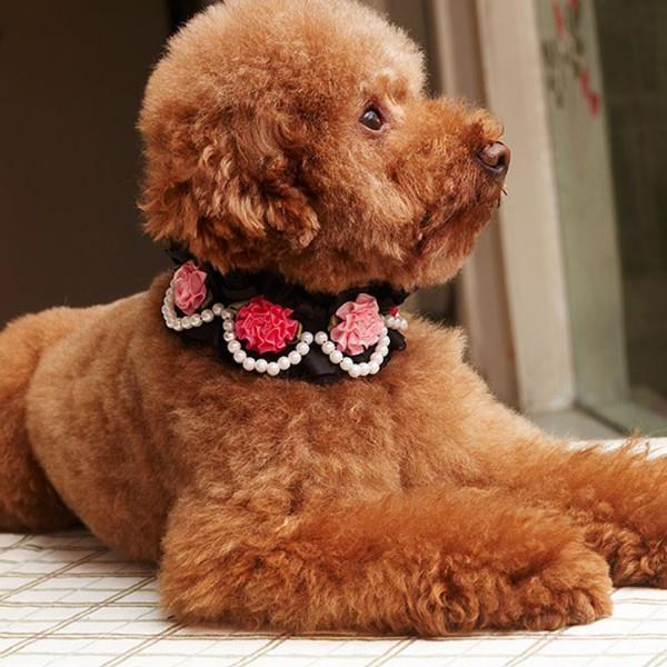 Pet Dog Puppy Neck Collar Lace Rose Pearls Pendant PU Leather Collar Adjustable(China (Mainland))