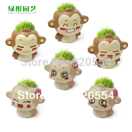 you laugh monkey Creative Gift Plant Bonsai Grass Doll Office Mini Plant Fantastic Home Decor pot+seeds 6 design free shipping(China (Mainland))